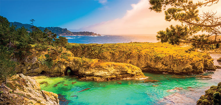 Monterey Bay California USA